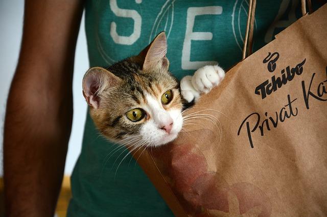 ładne torby papierowe