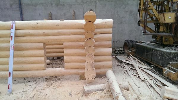 niedroga budowa domów drewnianych