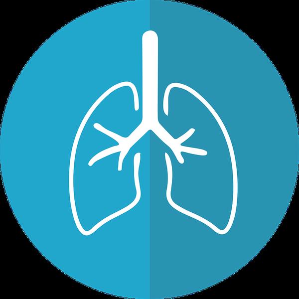 filtr oczyszczacz powietrza